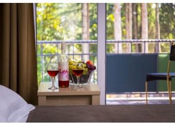 Стандарт 2-местный с балконом| Номера и цены | Отель «Родина»| Абхазия, Гудаутаский район, Новый Афон