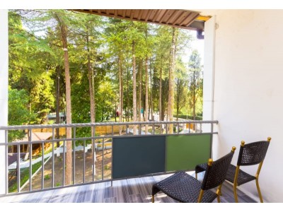Отель «Родина»| Абхазия, Гудаутский район, Новый Афон |Стандарт 2-х местный с балконом